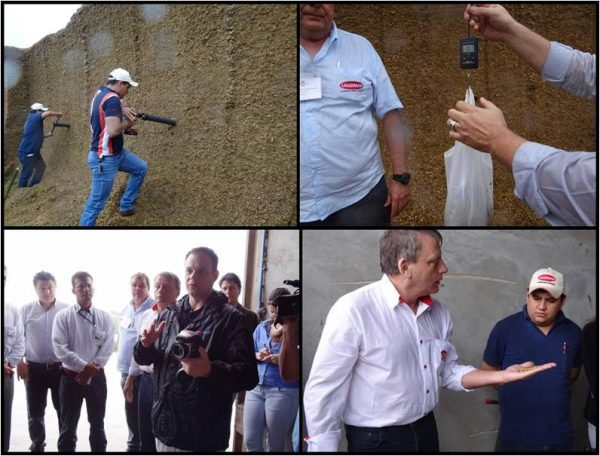 Farm visit during the Silage school in Brazil