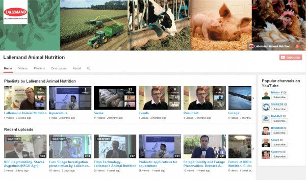 Lallemand Animal Nutrition Youtube Channel