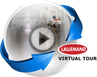 Lallemand Virtual Tour