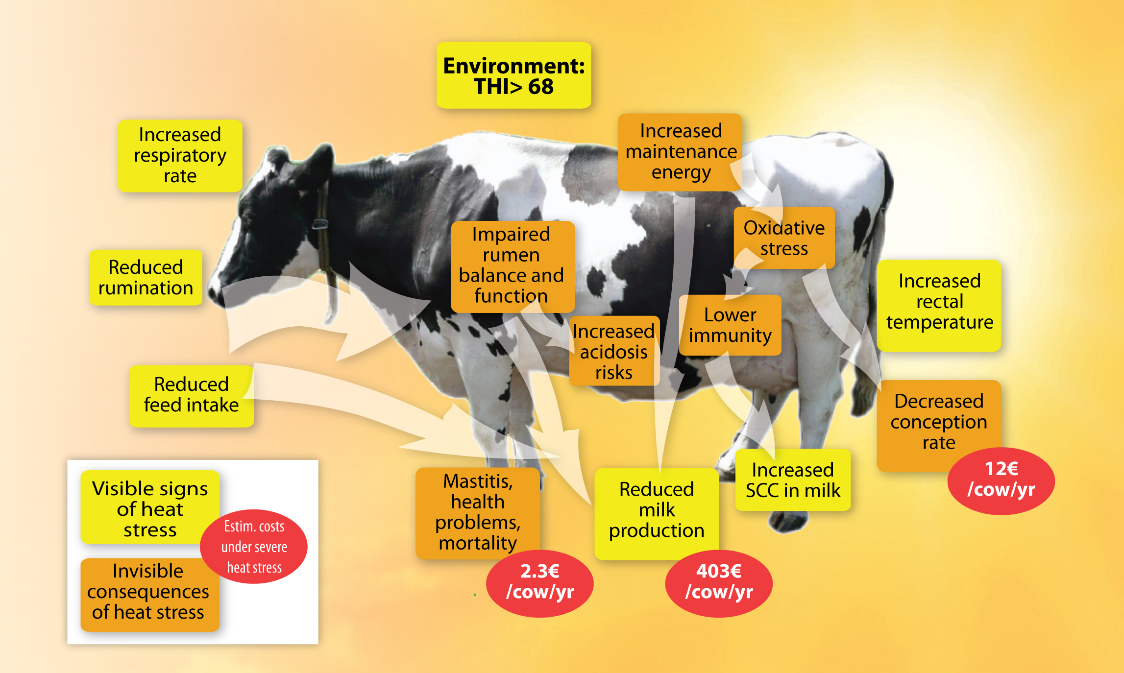 heat stress an underestimated issue for dairy cows lallemand