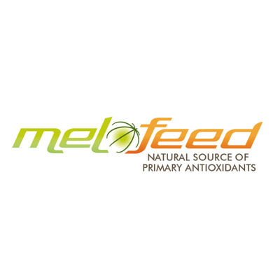 MELOFEED_LOGO_Eng_Web