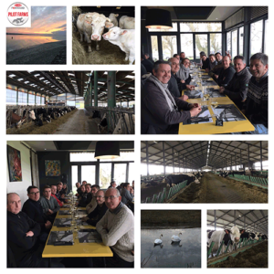9th Pilot Farm Day of Lallemand Animal Nutrition