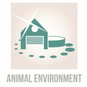 Image Environnement Lallemand Animal Nutrition