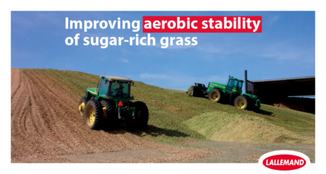 photo of two tractors silage