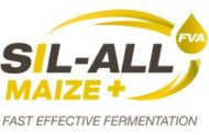 sil-all-maize-fva-en