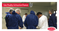 Poultry School Lallemand Animal Nutrition