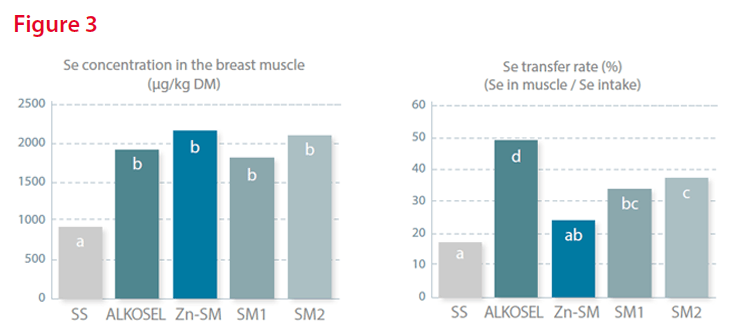 Se concentration (left) and transfer rate into the breast muscle (right) of different organic Se sources (fed at 0.2 mg Se per kg complete feed) after 14 days supplementation to broiler chicks (p<0.001).