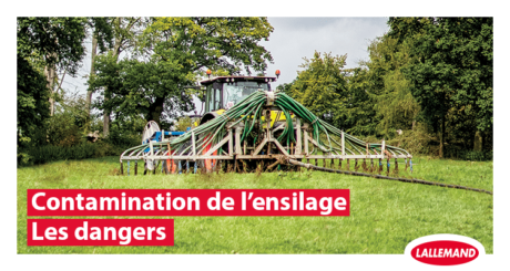contamination ensilage terre lisier dangers
