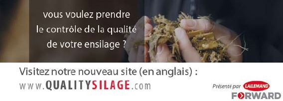 quality silage (site ensilage)
