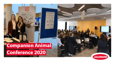 companion animal nutrition conference lallemand animal nutrition
