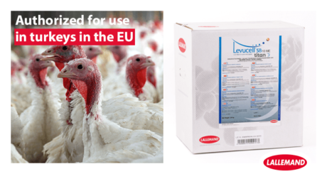lsb is now authorized for use in turkey in europe