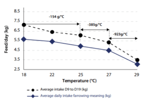 graph feed intake heat stress sows