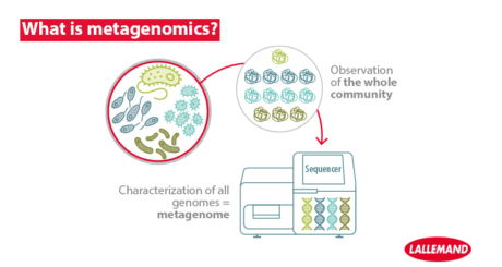 what is metagenomics