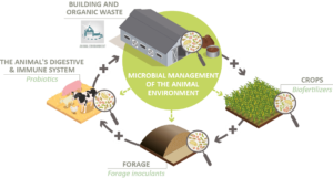 Microbial management of farms environment ecosystems